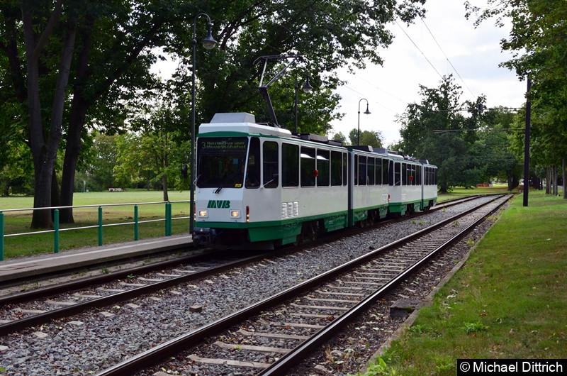 1288 und 1289 erreichen die Endhaltestelle Herrenkrug.
