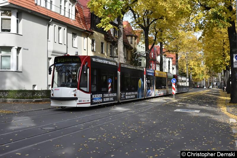 TW 643+709 als Linie 3 in der Windthorststraße.