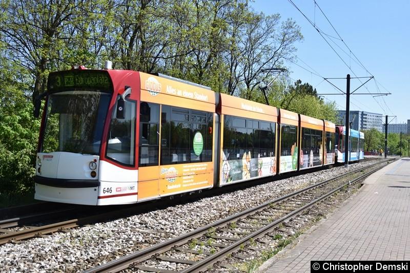 TW 646+709 als Linie 3 in Bereich Nordhäuser Straße auf den Weg zur Haltestelle Thüringen-Park.