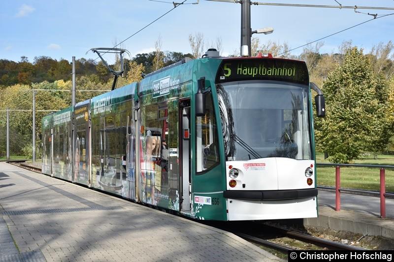 TW 656 als Linie 5 am Zoopark