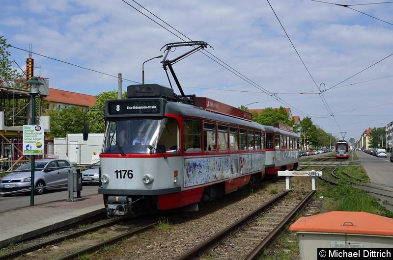 Sonderfahrt mit 1176 + 204: Ankunft Elsa-Brandström-Straße. Im Hintergrund fährt der 622 als Linie 8 nach Trotha.