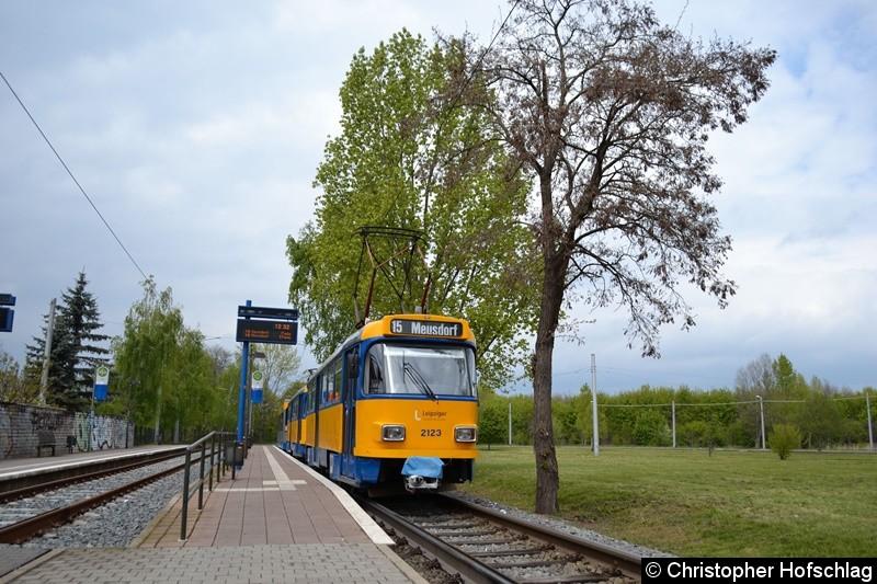 TW 2123+2113+BW 927 als Linie 15 in Miltitz.