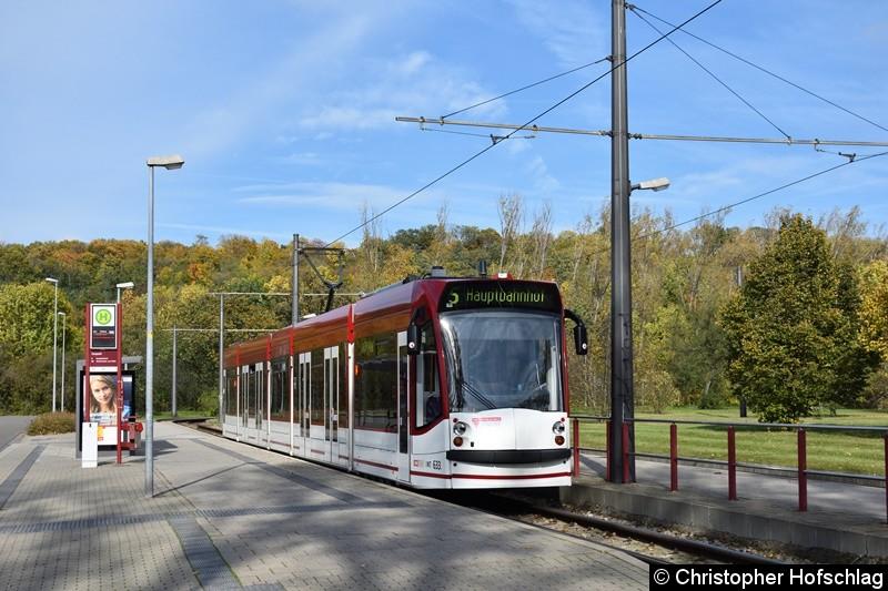 TW 633 als Linie 5 am Zoopark