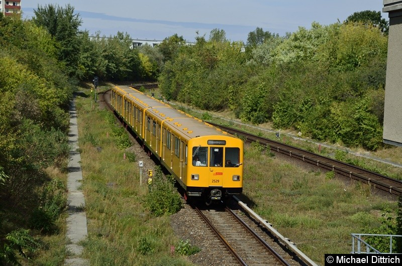 2529 erreicht, mit zwei weiteren F-Zügen, gleich den Bahnhof Kienberg.